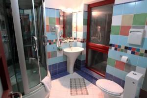 hotel_craiova_casa_david_003